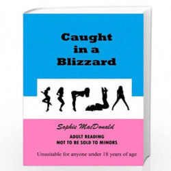 Caught in a Blizzard by Sophie MacDonald Book-9781493658329