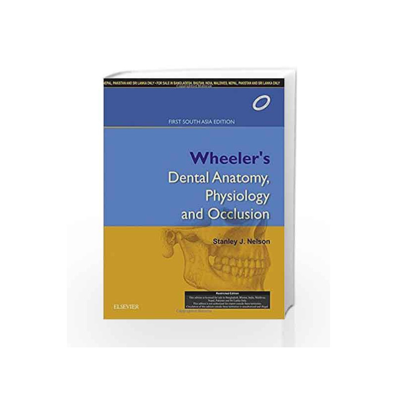 Nelson - Wheeler\'s Dental Anatomy, Physiology and Occlusion: First ...