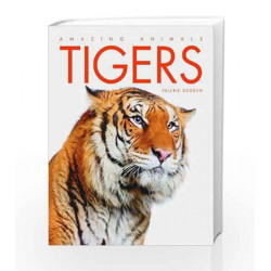 Tigers by VALERIE BODDEN Book-9788184953374