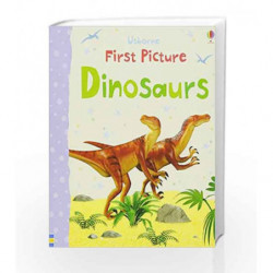First Picture Dinosaurs (First Picture Books) by Felicity Brooks Book-9781409537090