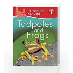 Kingfisher Readers: Tadpoles and Frogs (Level 1: Beginning to Read) by Thea Feldman Book-9780753436615