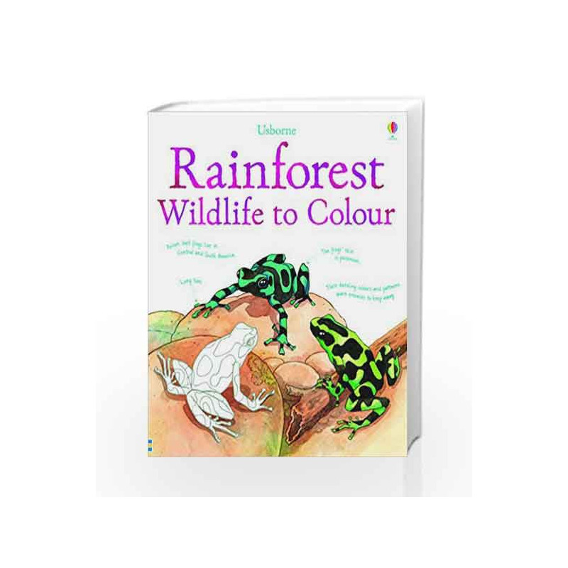 Rainforest Wildlife to Colour (Nature Colouring Books) by Susan Meredith Book-9781409549857