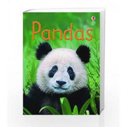 Pandas (Beginners Series) by James Maclaine Book-9781409581598