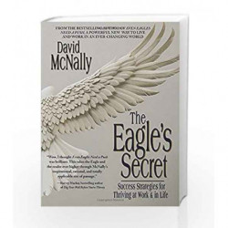 The Eagle's Secret: Success Strategies for Thriving at Work & in Life by David McNally Book-9780440508458