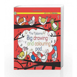 Big Drawing, Dooling and Colouring tear-off Pad (Tear-off Pads) by Jo Litchfield Book-9781409577423