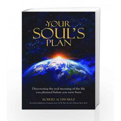Your Soul's Plan: Discovering The Real Meaning Of The Life You Planned Before You Were Born book -9789382742548 front cover
