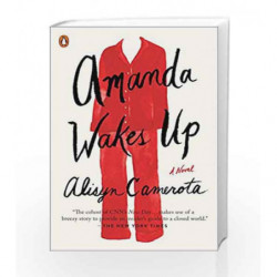 Amanda Wakes Up: A Novel by Camerota, Alisyn Book-9780399564000
